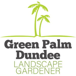 Green Palm Dundee